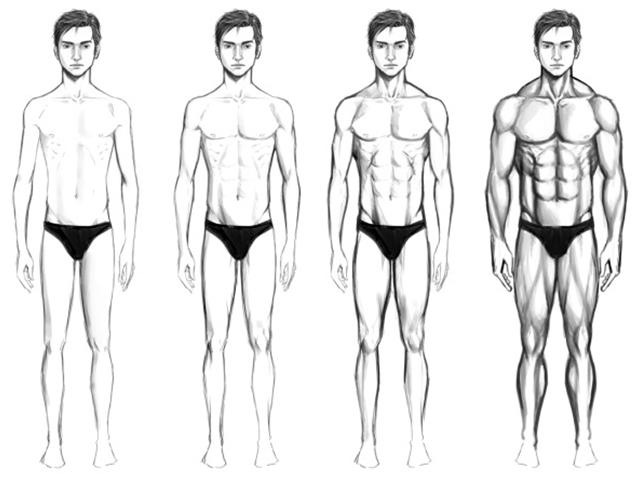 testsúlycsökkenés a testtípusok számára)